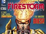 Fury of Firestorm Vol 1 14