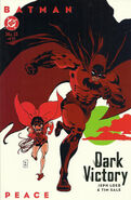 Batman Dark Victory Vol 1 13