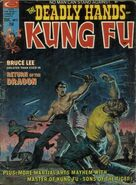 Deadly Hands of Kung Fu Vol 1 7