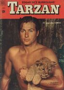 Edgar Rice Burroughs' Tarzan Vol 1 22