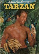 Edgar Rice Burroughs' Tarzan Vol 1 31