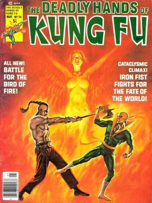 Deadly Hands of Kung Fu 24