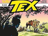 TuttoTex Vol 1 523