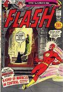 Flash Vol 1 208