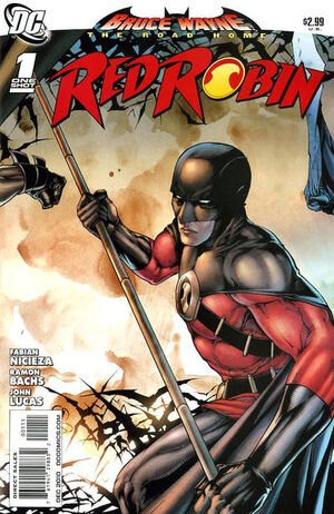 Bruce Wayne The Road Home Red Robin Vol 1 1