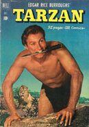 Edgar Rice Burroughs' Tarzan Vol 1 25