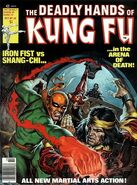 Deadly Hands of Kung Fu 29