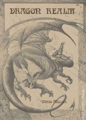 Dragon Realm Portfolio