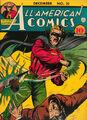 All-American Comics Vol 1 21