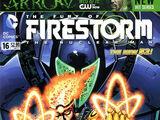 Fury of Firestorm Vol 1 16