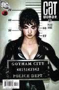 Catwoman Vol 3 51