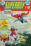 Superboy Vol 1 191