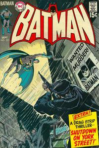 Batman Vol 1 225