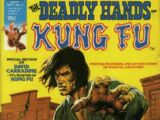 Deadly Hands of Kung Fu Vol 1 4