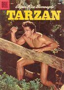 Edgar Rice Burroughs' Tarzan Vol 1 91