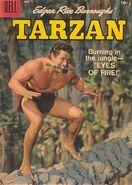 Edgar Rice Burroughs' Tarzan Vol 1 105