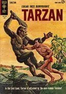 Edgar Rice Burroughs' Tarzan Vol 1 135