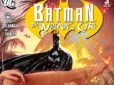 Batman: Widening Gyre Vol 1 3