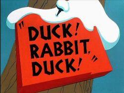 Duckrabbitduck