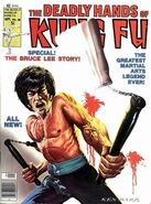 Deadly Hands of Kung Fu 28