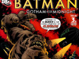 Batman: Gotham After Midnight Vol 1 3