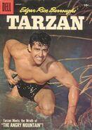 Edgar Rice Burroughs' Tarzan Vol 1 95