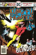 Richard Dragon, Kung Fu Fighter Vol 1 8