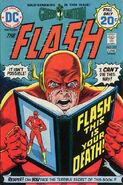 Flash Vol 1 227