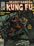 Deadly Hands of Kung Fu 23