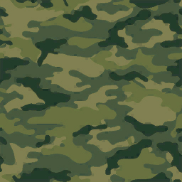 Camouflage05
