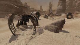 Sand valley 4