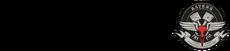 Казначей 100 эмблема