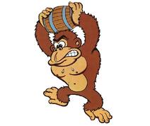 Donkey Kong I