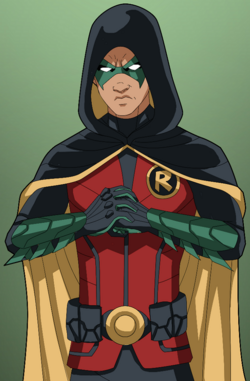 Robin V (Hooded)