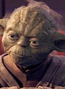 Yoda Realistic Portrait