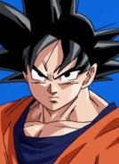 Goku 20000