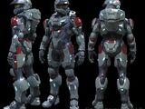 Spartan V Program