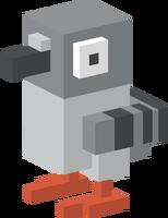 Poopy Pigeon
