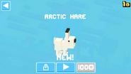 Arctic Hare1