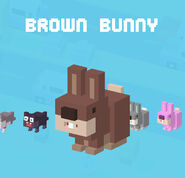 http://crossyroad.wikia.com/wiki/File:CrossyRoad_Portrait_BrownBunny