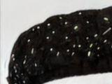 Akutsu Futoshi