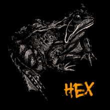 Fuq u Hex