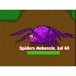 Spiders McKenzie