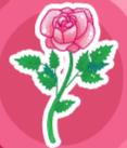 File:Rose.png