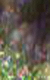 Extreeme-close-up-enhanced