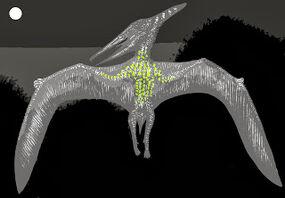 Duah sketch, showing luminous underside at night, Tim Morris (1)