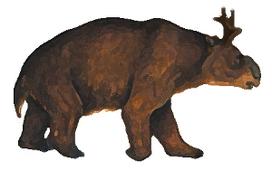 Antler-wombat