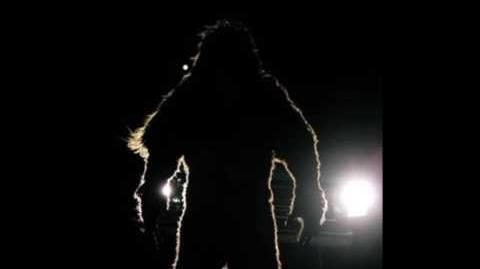 Witness Watches A Bigfoot Cross The Road - Makes Him An Instant Believer!
