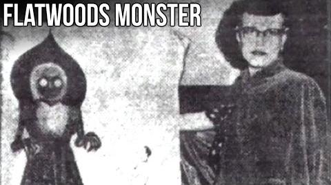 """The Flatwoods Monster"" Urban Legend Profile"
