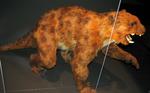 Thylacoleo physical reconstruction